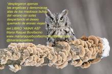 del poema Desnudamos los Cuerpos