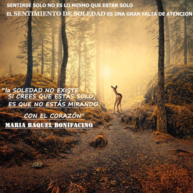 Falsa Soledad (La física cuántica demuestra que no estamos solos.