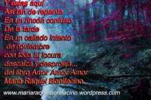 maria raquel bonifacino (115)