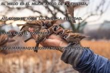 maria raquel bonifacino (75)