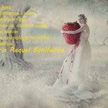 del libro Amor Amor Amor 12m
