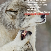 seremos lobos
