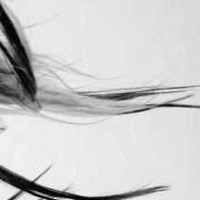 amores de viento