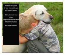 has llorado