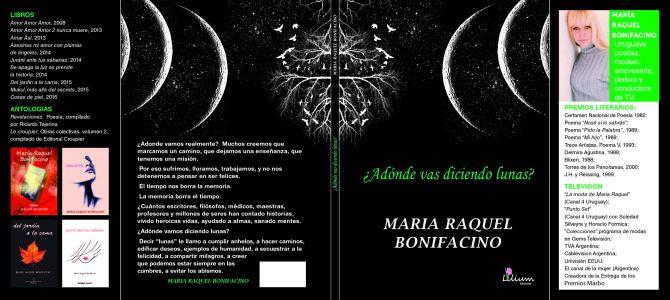Tapa 14x20 c solapas bonifacino_Opcion 2
